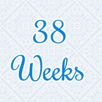 38-weeks